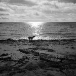 The beach at Portmellon
