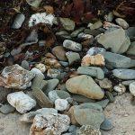 Chapel Point Beach