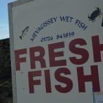 Mevagissey caught fish