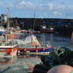Busy fishing fleet
